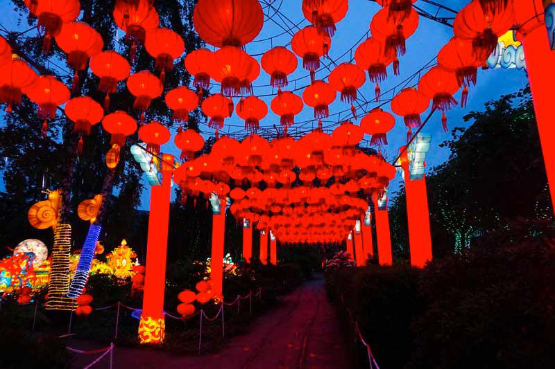 f ries de chine festival des lanternes gailllac tarn midi pyr n es grand sud. Black Bedroom Furniture Sets. Home Design Ideas